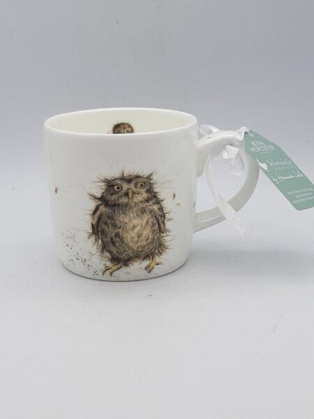 4P77 Кружка  Royal Worcester Wrendale Designs What a Hoot Owl Fine Bone China Mug,  Royal Worcester, England