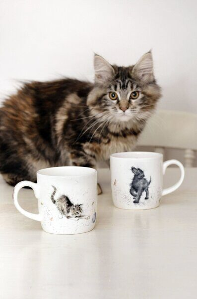 Royal Worcester Wrendale Designs Cat and Mouse Fine Bone China Mug 3